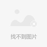 猪精女孩.png